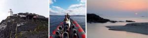 Bere Island Sea Safari